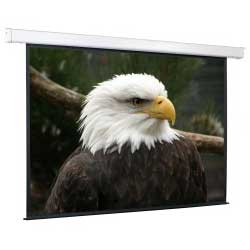 Экран для проектора рулонный ScreenMedia Champion 183х244, настенно-потолочный моторизированный 4:3 244x183 MW, экран, эл.привод (SCM-4304)